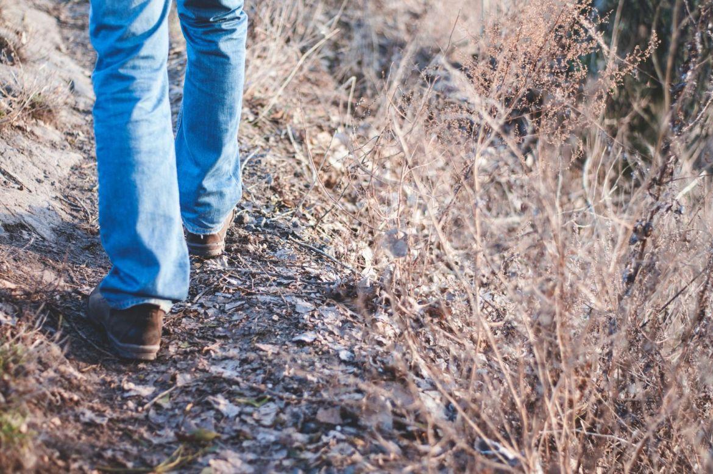 walk-and-talk.jpg